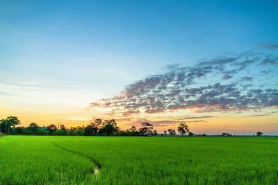 Регионална ТЦП на ФАО за зајакнување на малите сопственици и семејни фарми